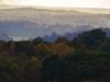 Autumn View from Newlands Corner