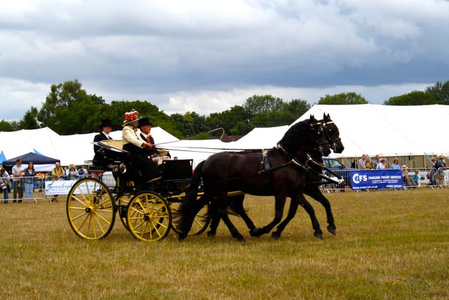 Driving at the Cranleigh Show