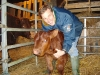 Tim with second calf