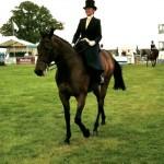 Side Saddle Concours D'Elegance