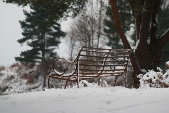 Surrey Hills Snow